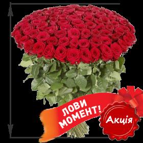 Фото товара 101 акционная красная роза