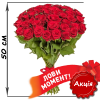 Фото товара 51 акционная красная роза