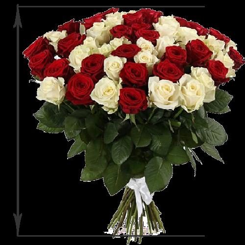 51 красная и белая роза (50 см)